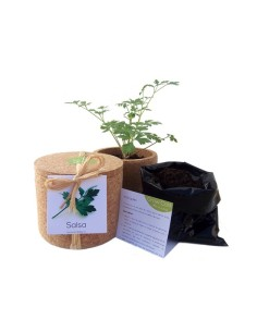Grow Cork Pot Salsa Life in a Bag 500g |